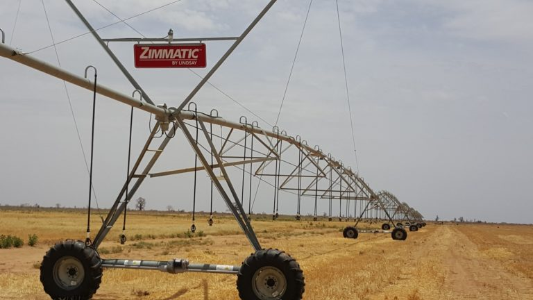 Mali Commercial Agriculture
