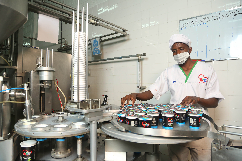 Kenya Dairy Processing