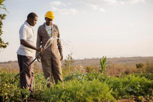 SunCulture, developing affordable solar-powered water irrigation and energy management systems
